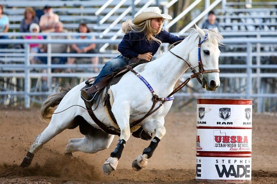 Say 'Neigh' to Horse-Riding | PETA