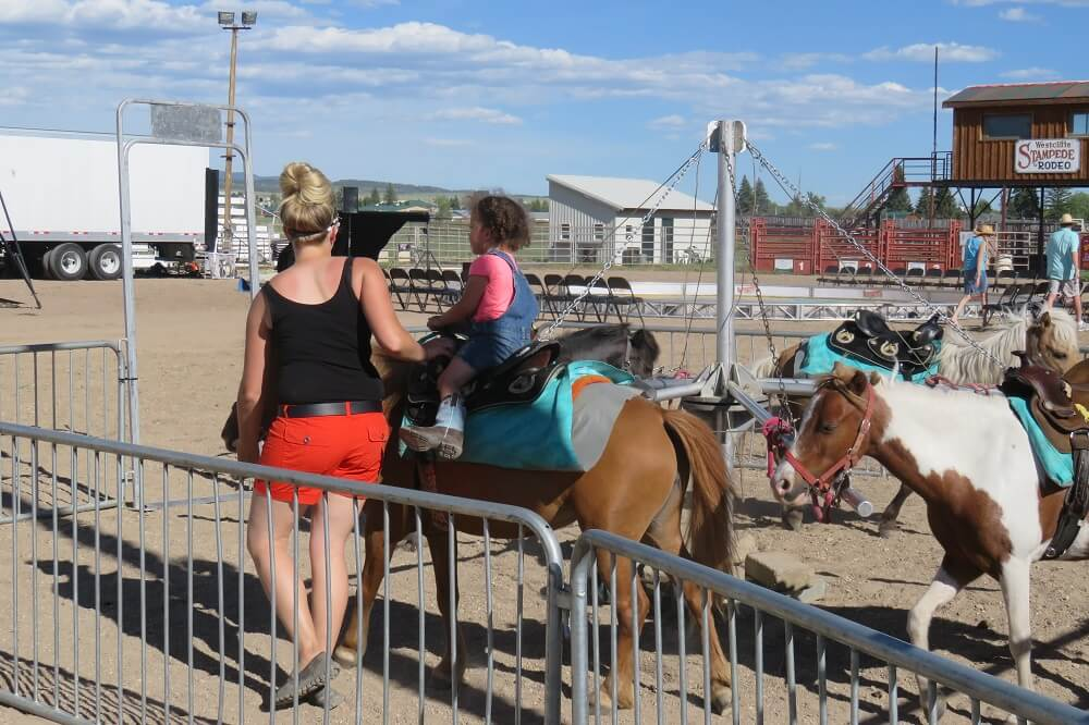Pony Rides Live Carousels
