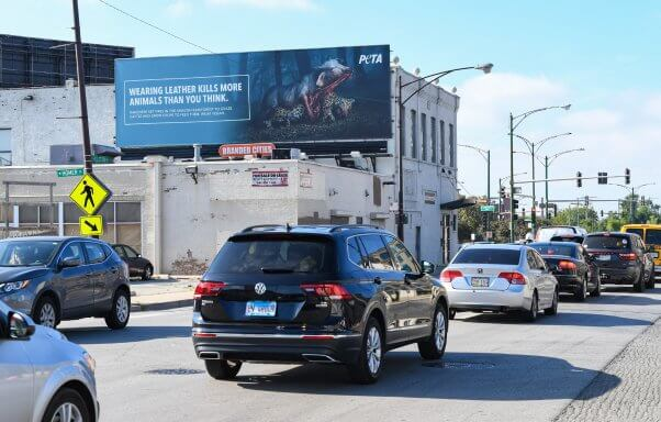 Wearing Leather Kills Animals PETA Ad in Chicago