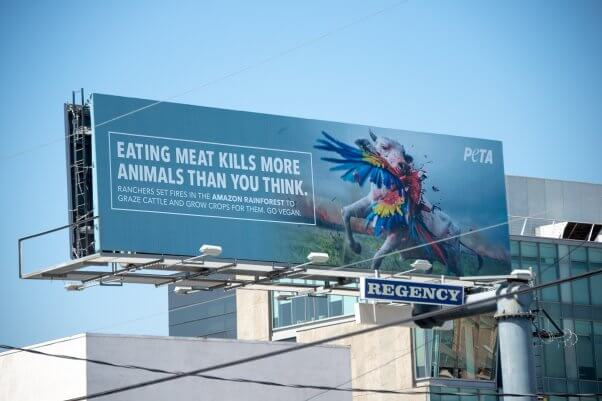 peta billboard, amazon deforestation, fires, leather, meat, outside brazilian consulate in los angeles