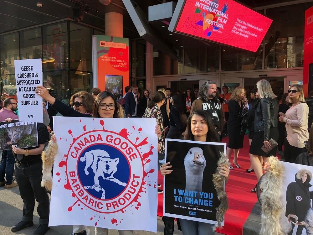 Toronto International Film Festival Protest
