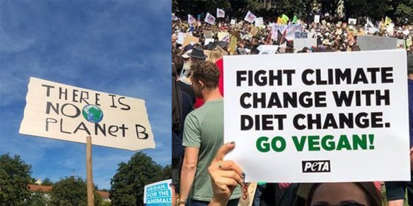 """signs from worldwide climate march say """"there is no planet b"""" and """"fight climate change with diet change."""""""
