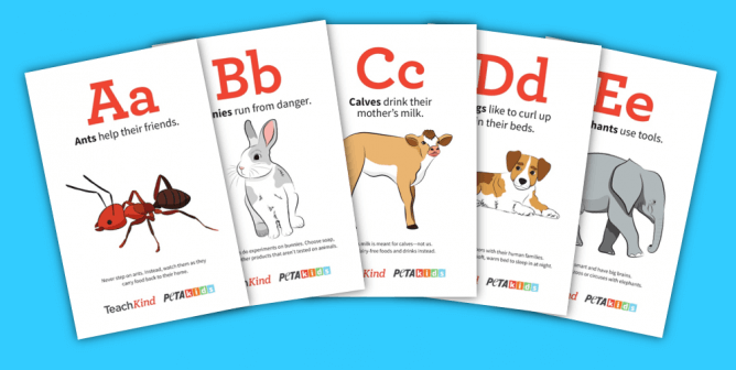 TeachKind's 'Like You, Only Different' Alphabet Flashcards