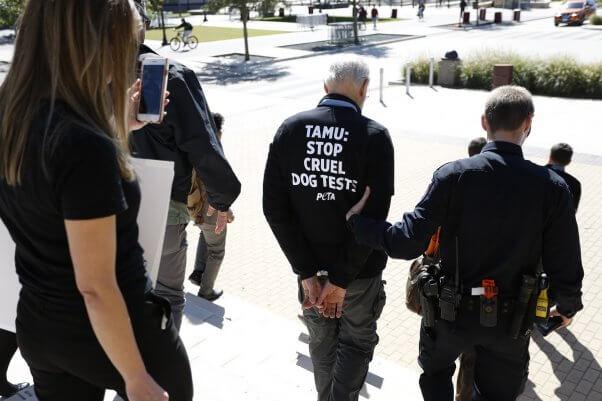 texas A&M, dog laboratory protest