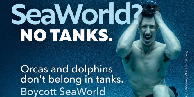 Eric Balfour: SeaWorld? No Tanks.