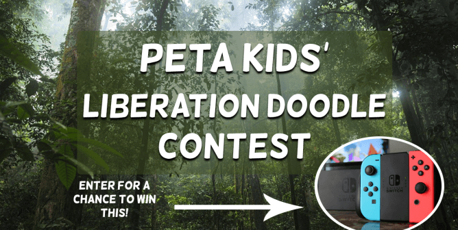PETA Kids' Liberation Doodle Contest: Enter for a Chance to Win a Nintendo Switch