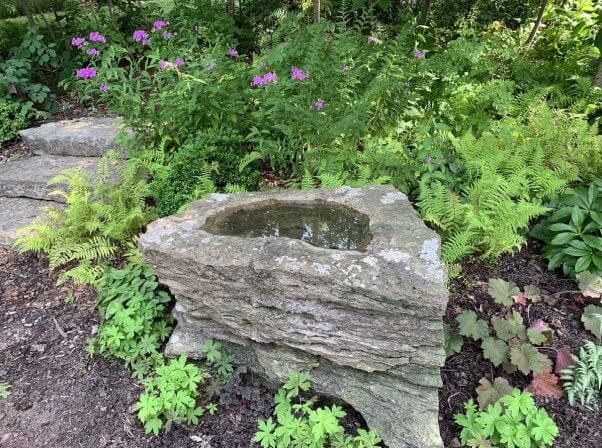garden, nature, wild flowers, wildlife habitat, pretty, colorful, featured