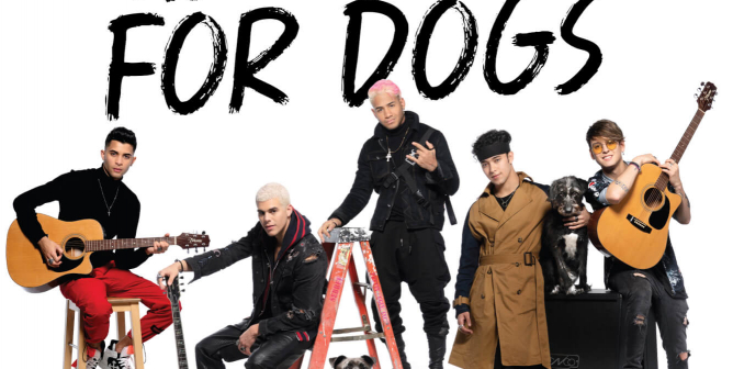 CNCO: Have A Heart For Dogs