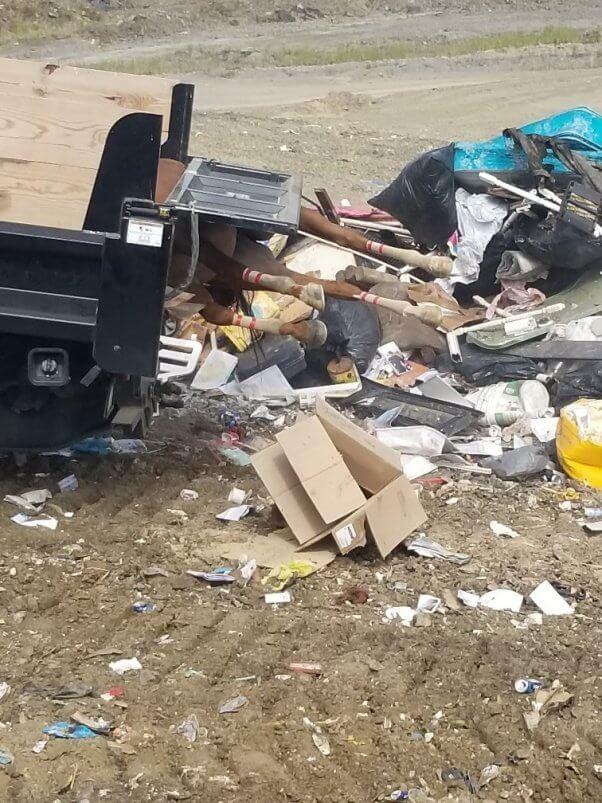 horse dumped like trash in a west virginia lanfill