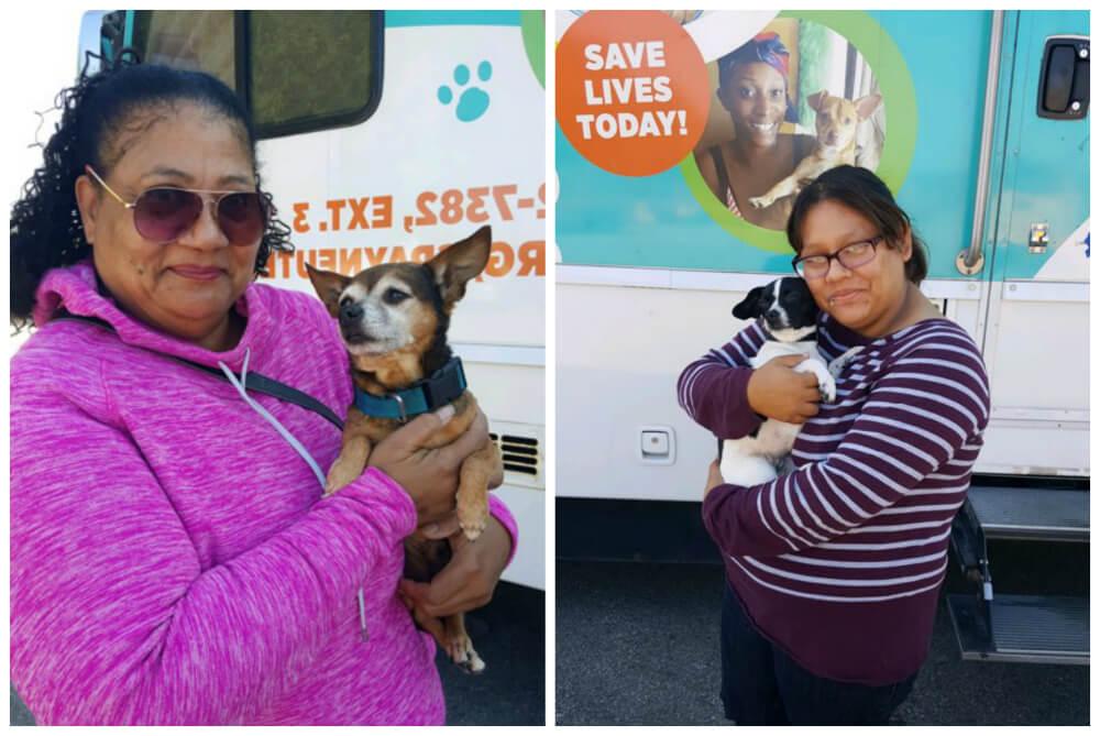 PETA Mobile Clinic, homeless animal, Spay, Neuter