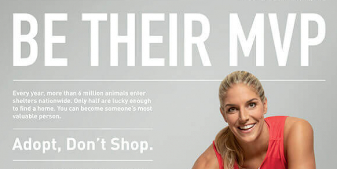 Elena Delle Donne: Be Their MVP—Adopt, Don't Shop