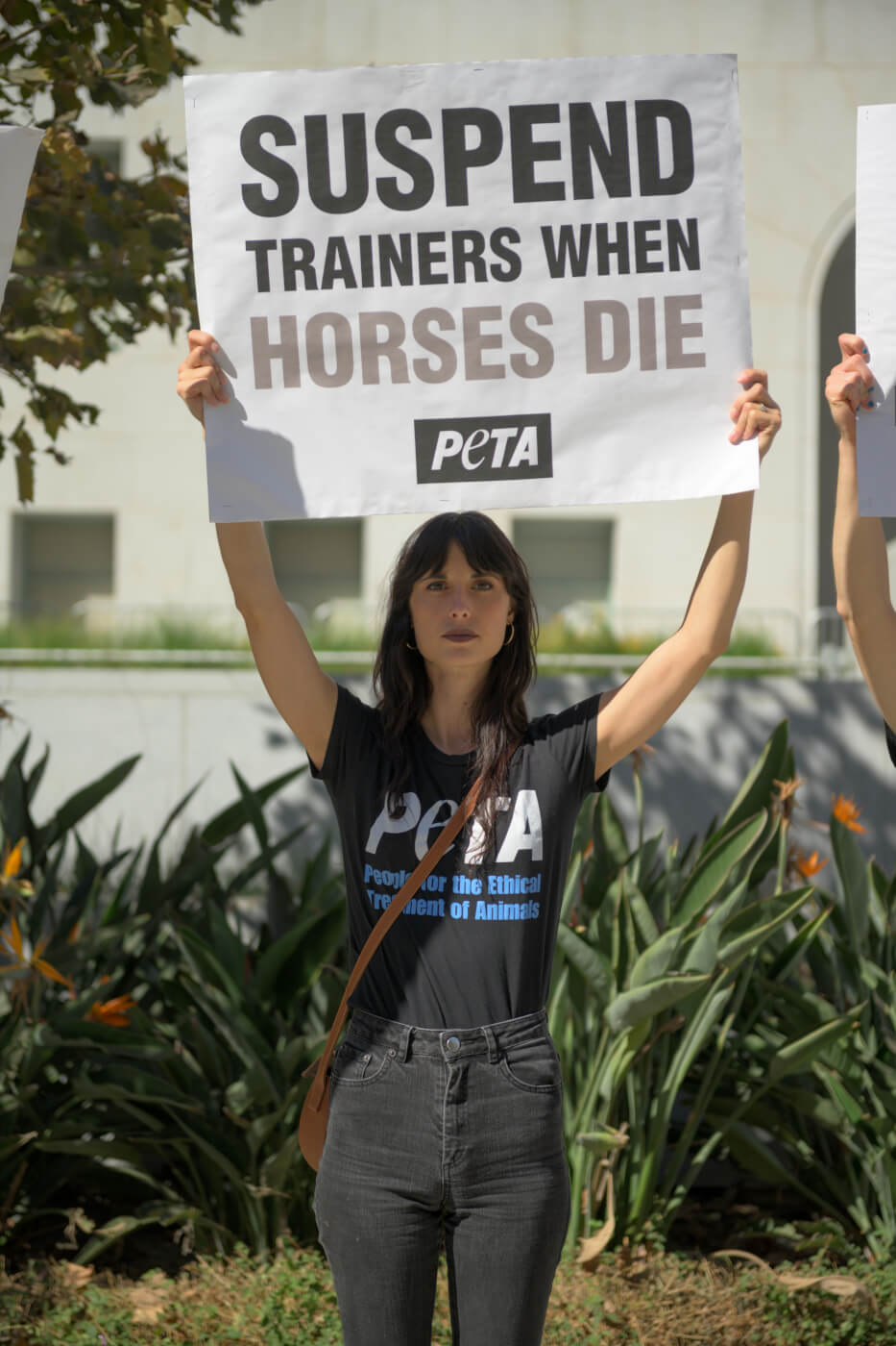 these 10 simple new racetrack rules from PETA will save lives