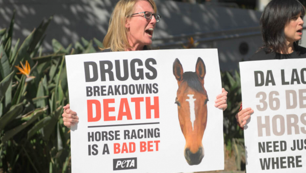 women protest horse racing in los angeles