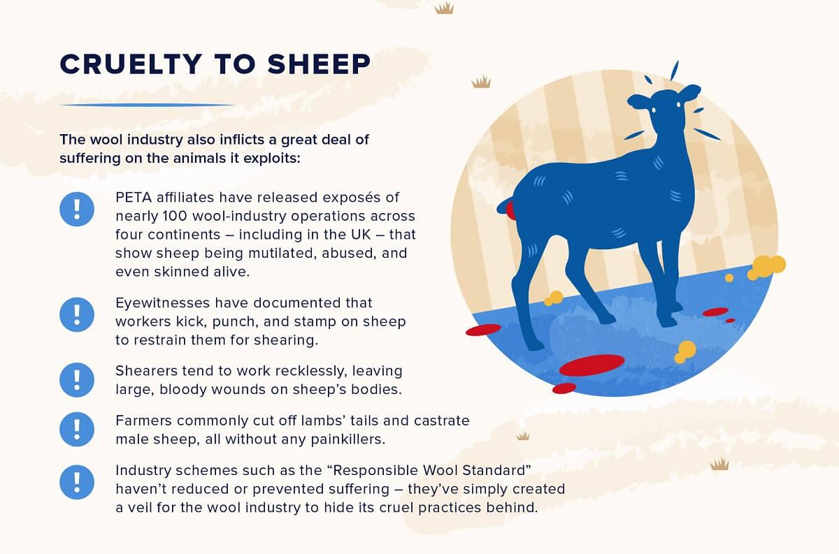 Wool, Cruelty to Sheep