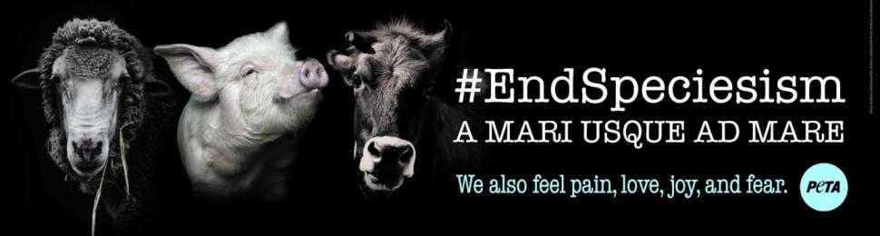 #EndSpeciesism: A mari usque ad mare