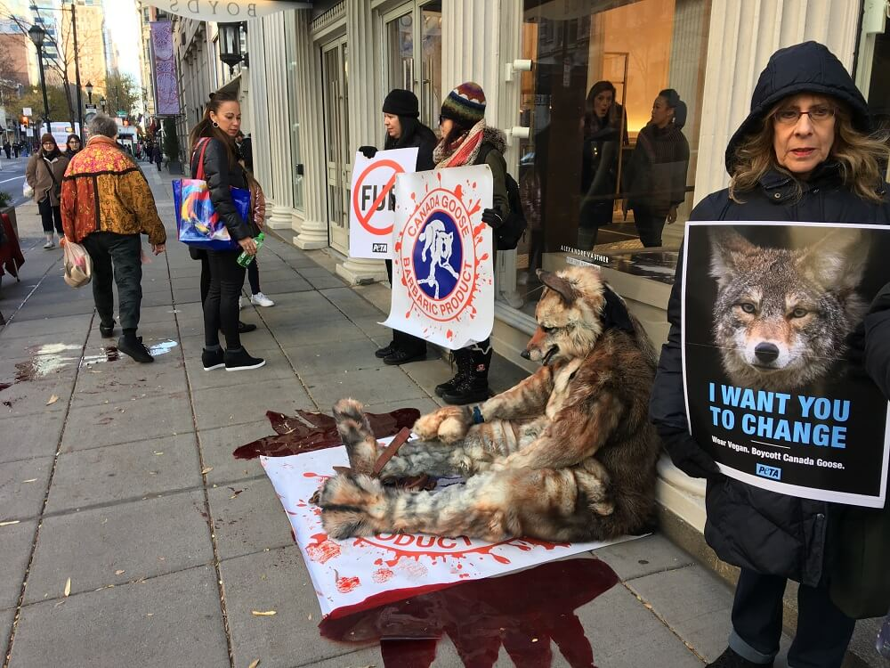 Fur Free Friday Protest