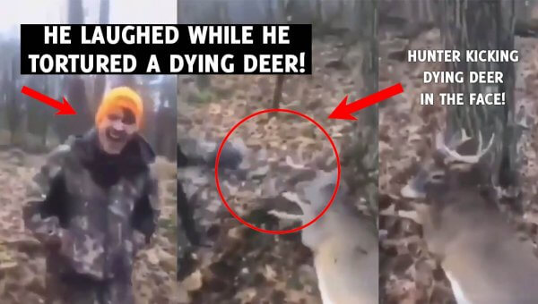He Stomped, Kicked, and Tore the Antlers off a Living Deer—and Received No Jail Time!