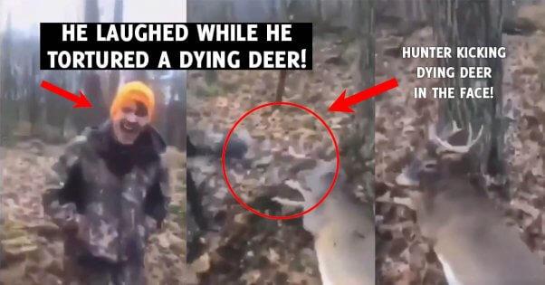 Pennsylvania Hunters Torture Injured Deer
