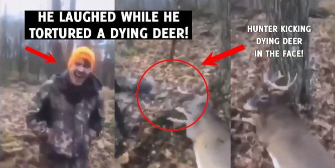 Hunters Who Tortured Deer Criminally Charged, Thanks to Public Outcry