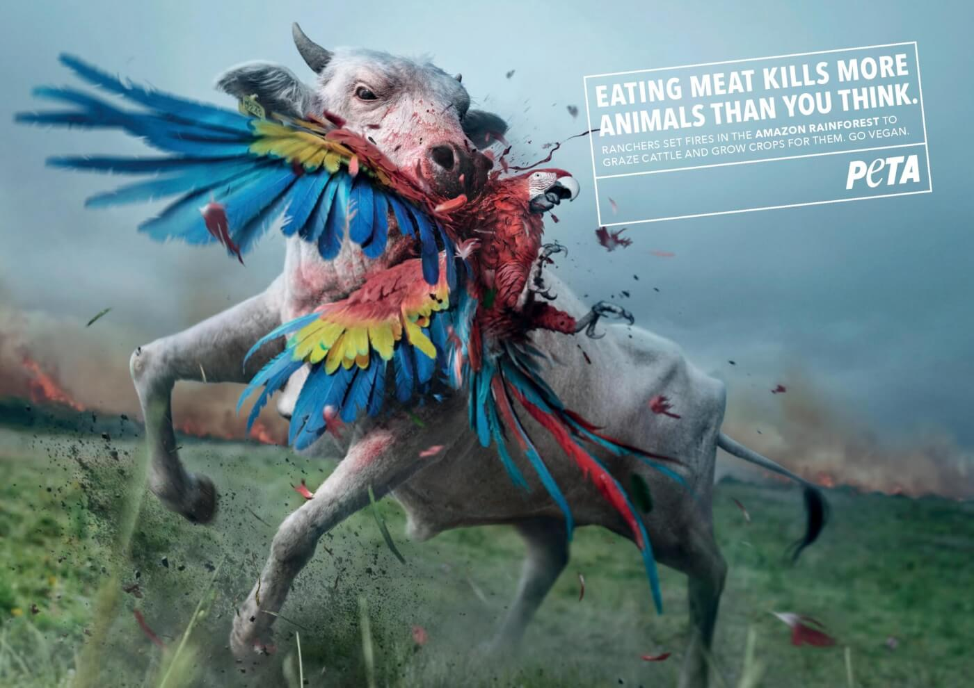 top PETA Billboard Ads 2019 Eating Meat Kills More Animals Than You Think