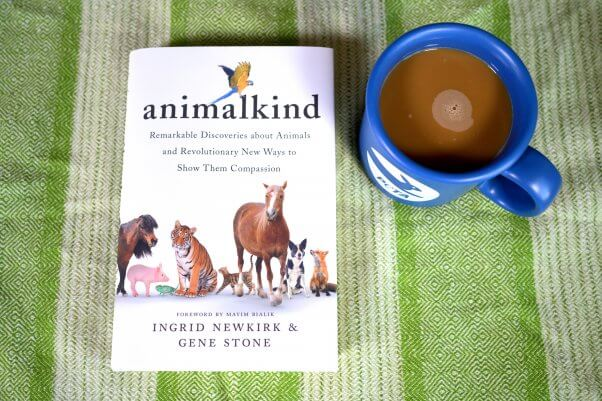 animalkind book on a green and white striped background with a mug of coffee in a blue peta mug