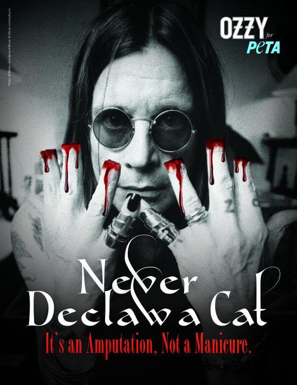 Ozzy Osbourne PETA Ad Never Declaw A Cat