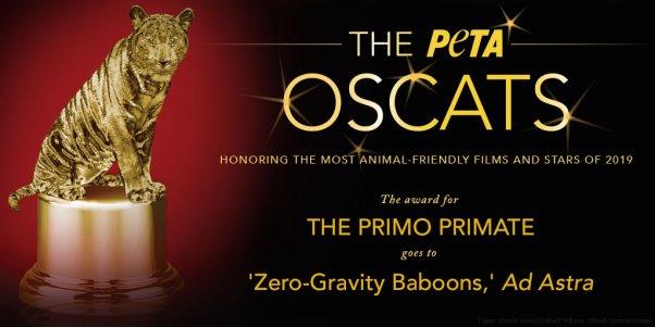 Ad Astra Wins PETA Oscats Award for The Primo Primate
