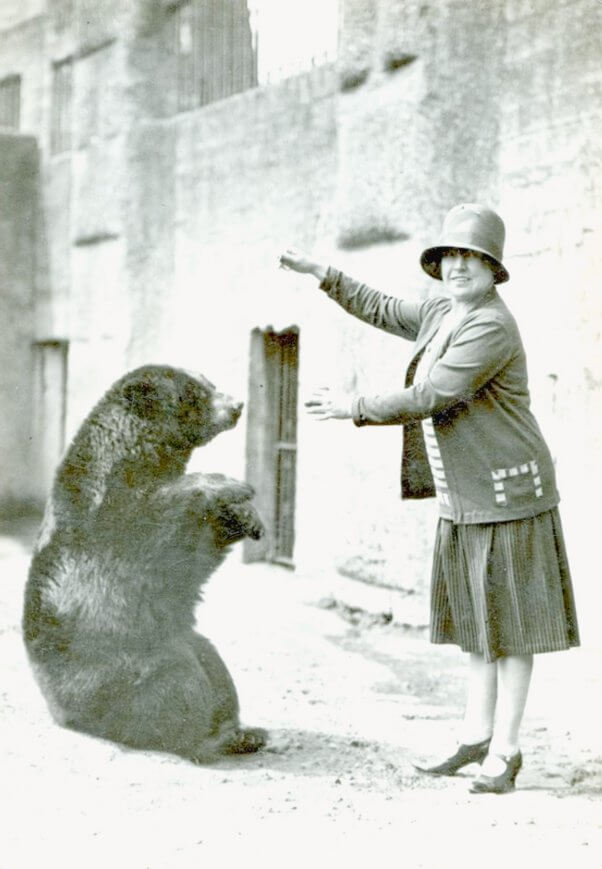 The Real Bear Behind the Iconic Winnie the Pooh Character