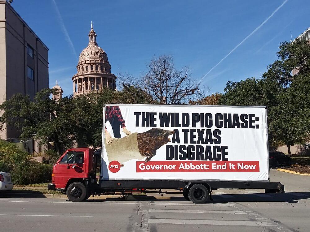 PETA Billboard condemning the Bandera Ham Rodeo