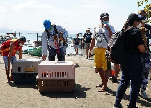 PETA rescue team with animals rescued from Taal volcano eruption