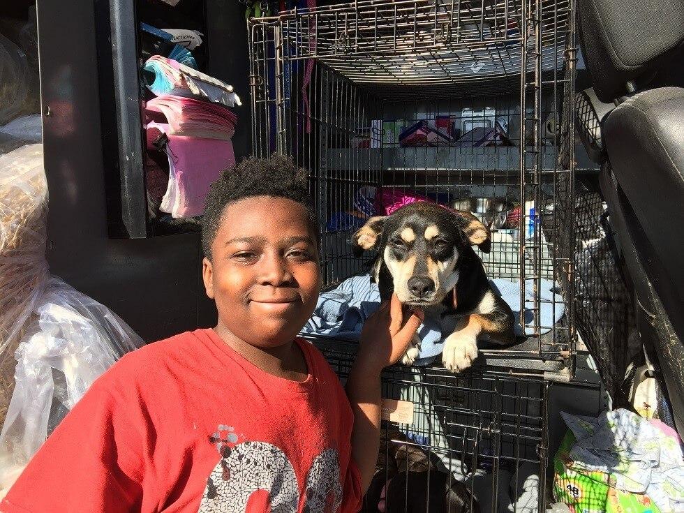Bella, a dog helped by PETA's spay/neuter program