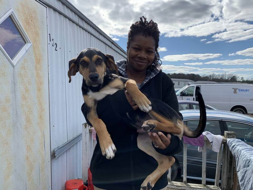 Jojo, a dog helped by PETA's spay/neuter program