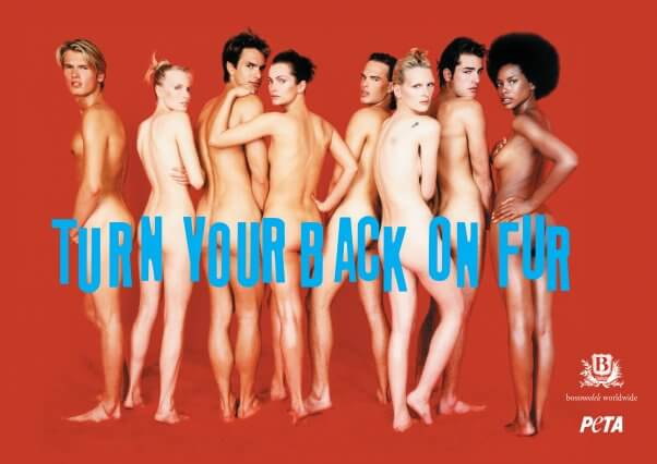 I'd Rather Go Naked Than Wear Fur
