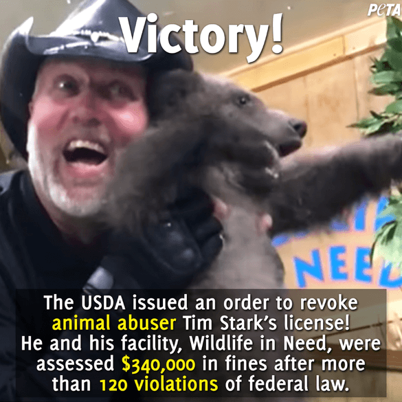 Victory Post for Tim Stark and Wildlife in Need's License Revocation