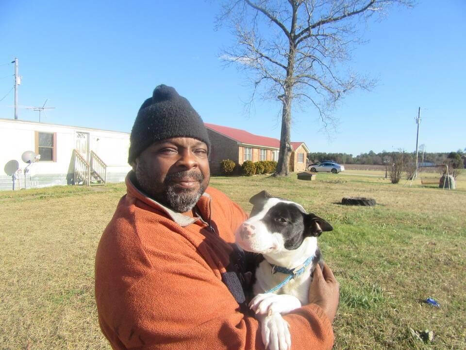 Tipsy, a dog helped by PETA spay/neuter program