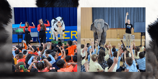 PETA Wants You to Invite This Cow and Elephant to Your School