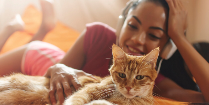 9 Ways for Teachers to Advocate for Animals While Staying Home