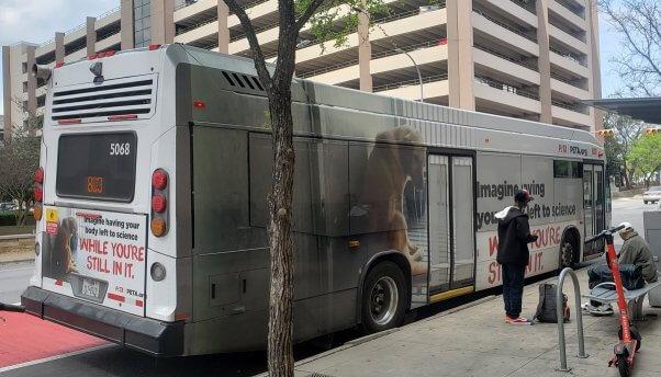 PETA's TAMU Ad Campaign Running on Austin Buses