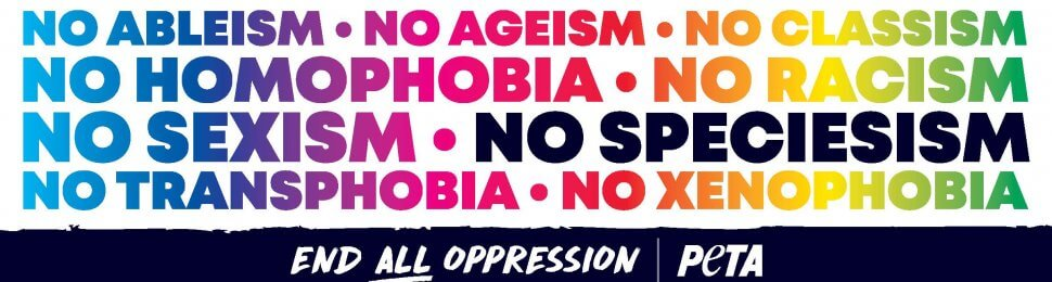 End All Oppression