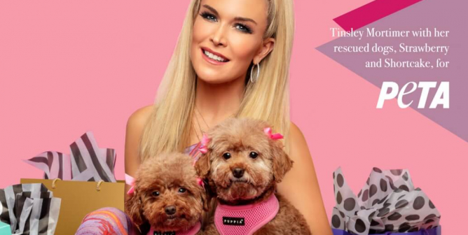 Tinsley Mortimer: Buy Shoes, Not Dogs