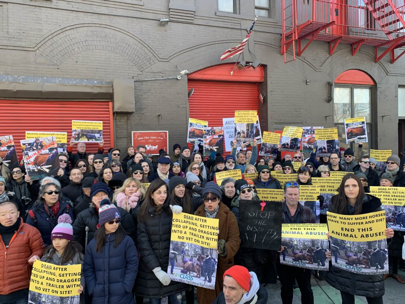 carriage horse dies in NYC, prompting protest