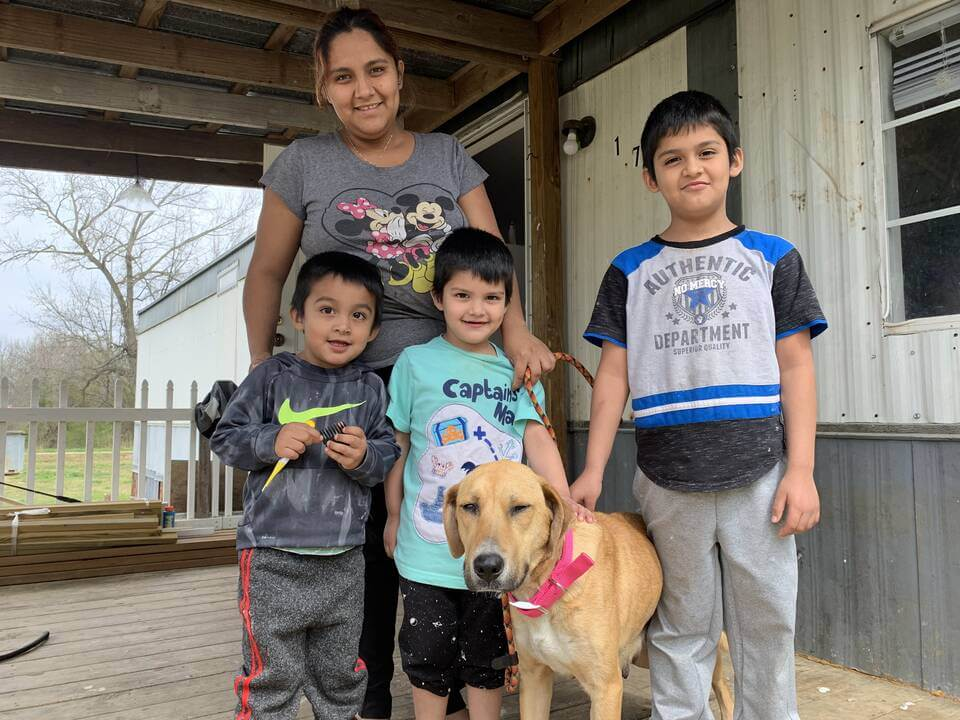 Amid the COVID-19 Crisis, Animals STILL Need Our Help