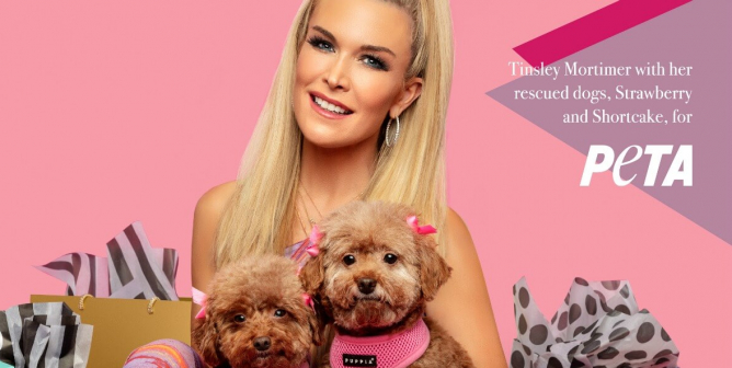 'Real Housewives' Star Tinsley Mortimer Loves to Shop—Just Not for Dogs