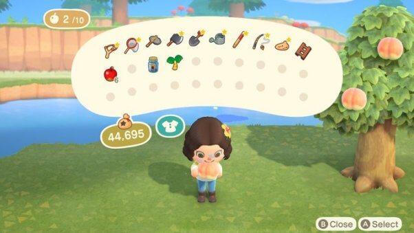 Vegan Food in Animal Crossing New Horizons videogame