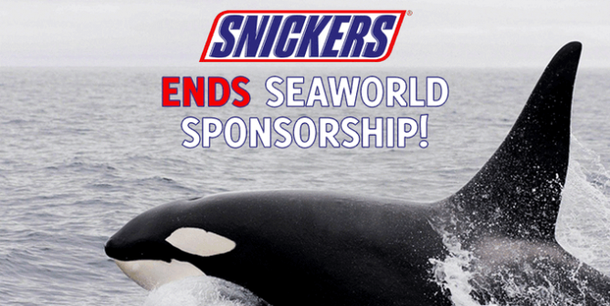 A Sweet Victory for PETA: Snickers Stops Sponsoring SeaWorld