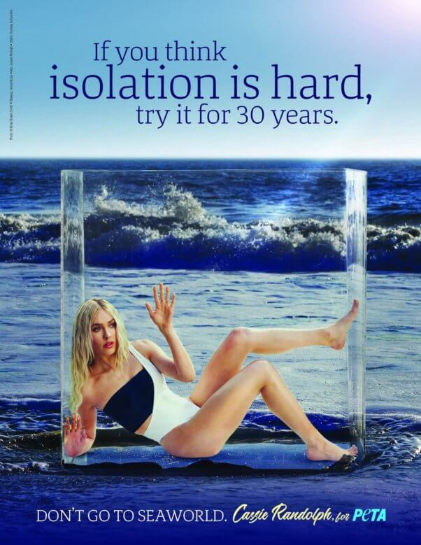 Cassie Randolph in a peta ad to save the whales and dolphins at SeaWorld