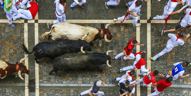 Will PETA's Big Offer End the Running of the Bulls for Good?