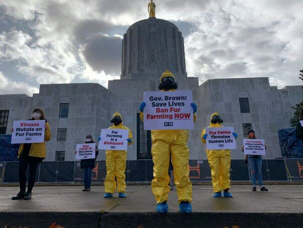 protesters wearing hazmat suits and holding signs condemning fur farms