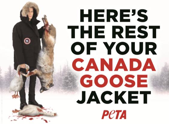 Anti Canada Goose Ad