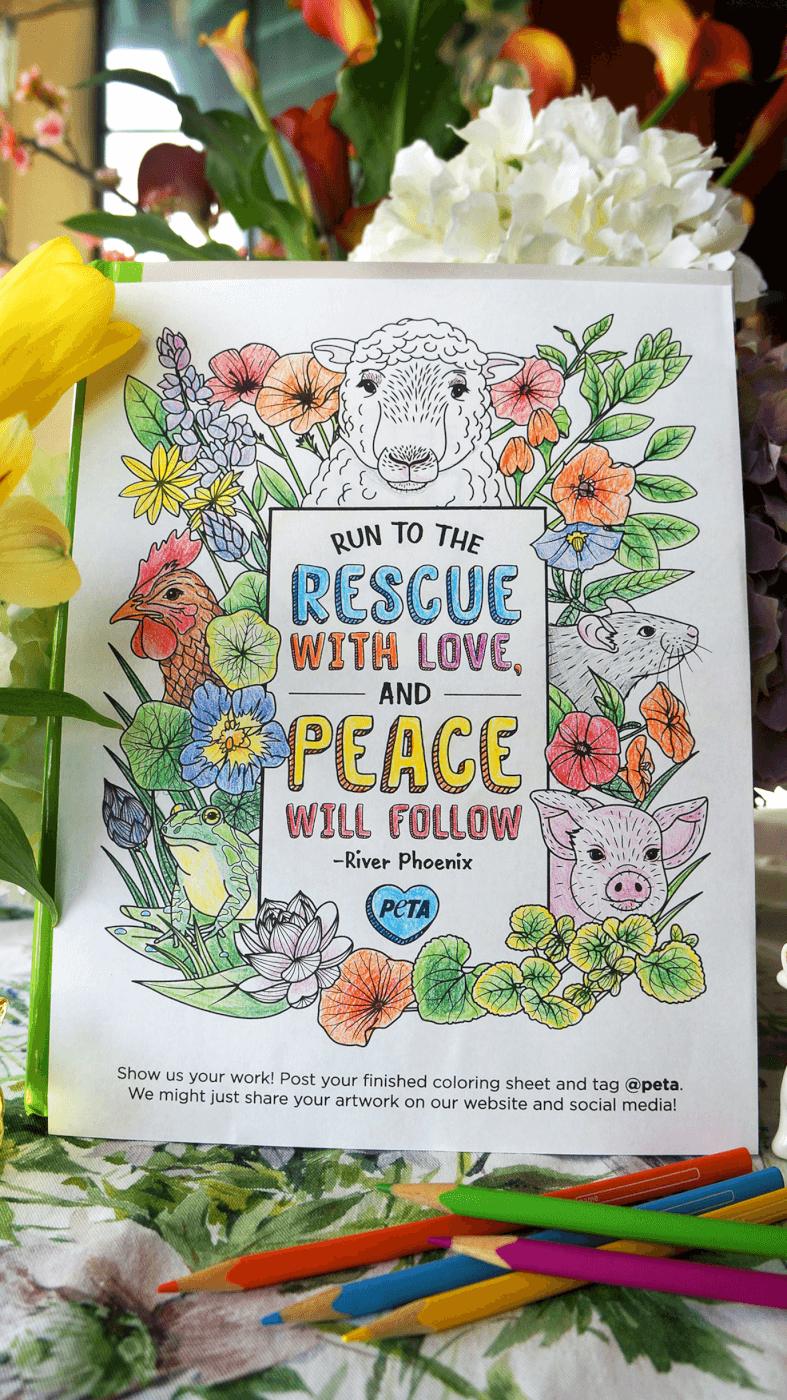 River Phoenix lyric coloring page by PETA